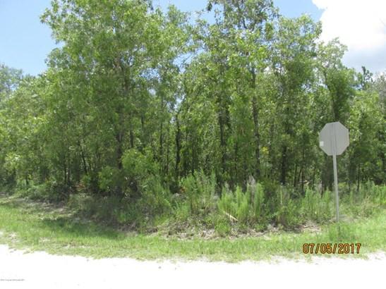 Single Family Residence - Weeki Wachee, FL (photo 3)
