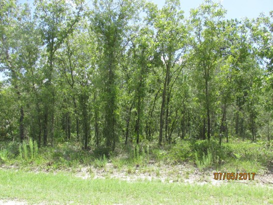 Single Family Residence - Weeki Wachee, FL (photo 5)