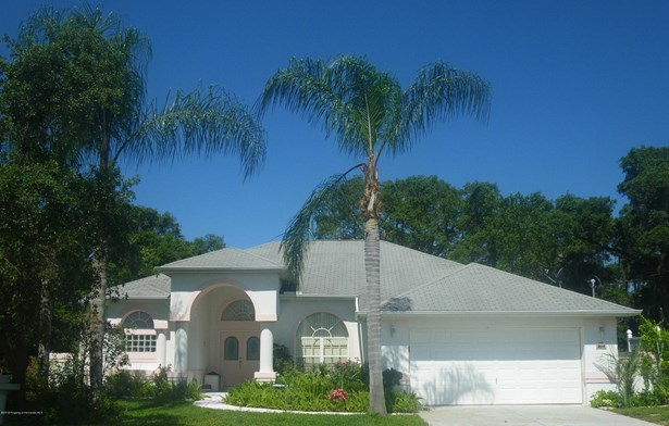 Other - See Remarks, Single Family Residence - Spring Hill, FL