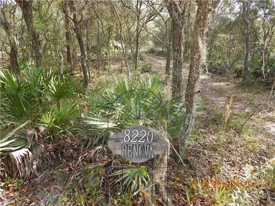 Other - WEBSTER, FL (photo 1)