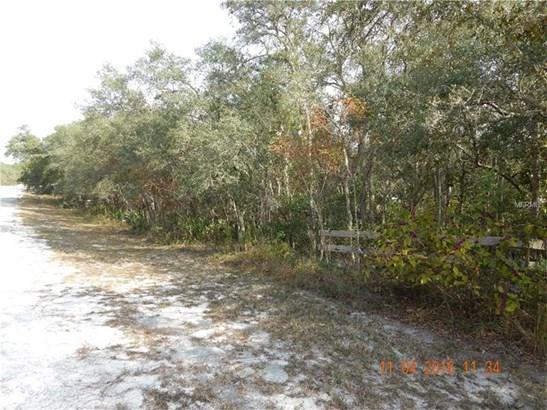 Other - WEBSTER, FL (photo 2)
