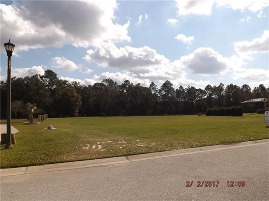 Residential Development - LAKELAND, FL (photo 5)