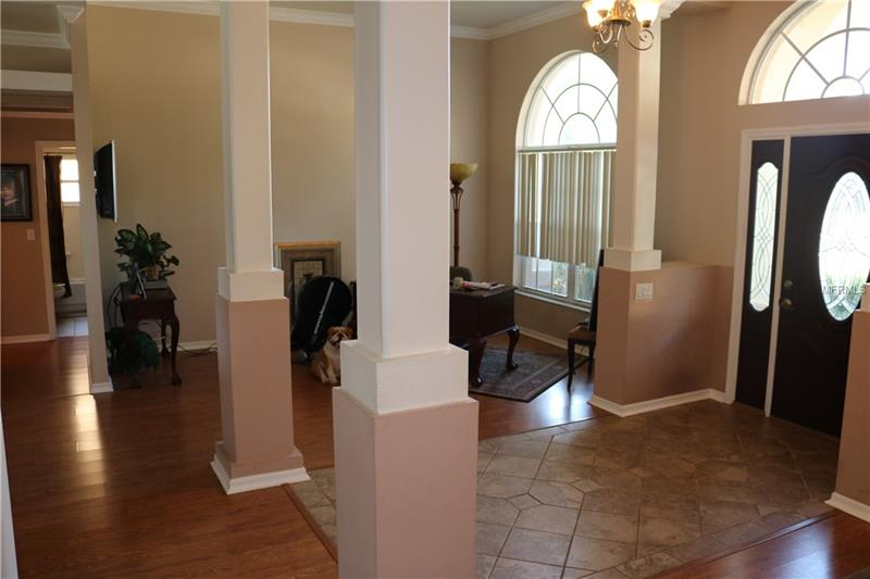 Single Family Residence - TAMPA, FL  33618-5311, FL (photo 5)