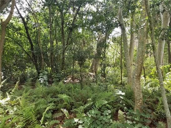 Unimproved Land - LAND O LAKES, FL (photo 4)
