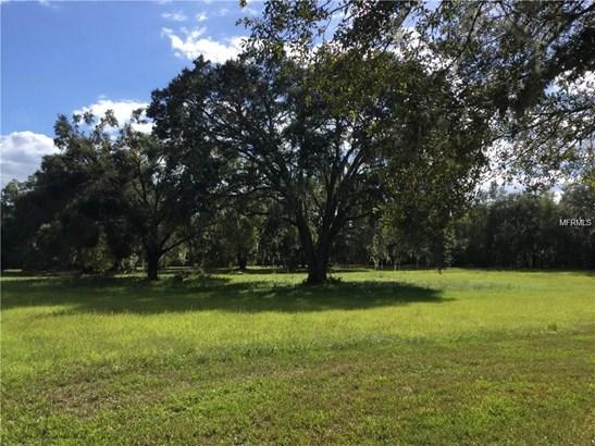 Residential - DADE CITY, FL (photo 2)
