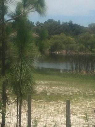 Acreage - Weeki Wachee, FL (photo 2)