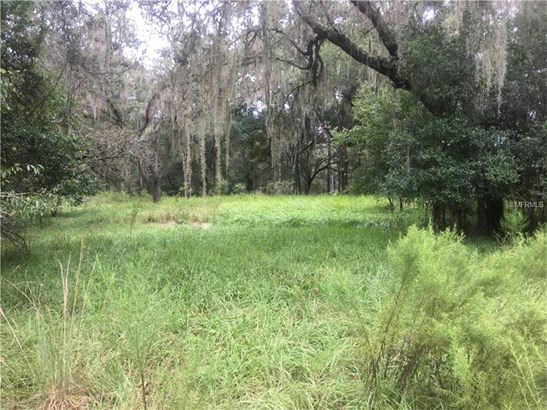 Single Family Use - LUTZ, FL (photo 3)
