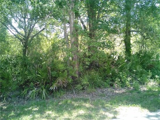 Unimproved Land - LUTZ, FL (photo 1)