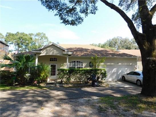 Single Family Home, Contemporary - LUTZ, FL (photo 1)