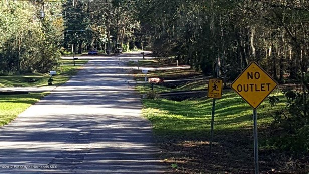 Vacant Land - Brooksville, FL (photo 1)