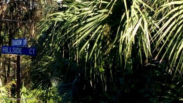 Vacant Land - Brooksville, FL (photo 4)