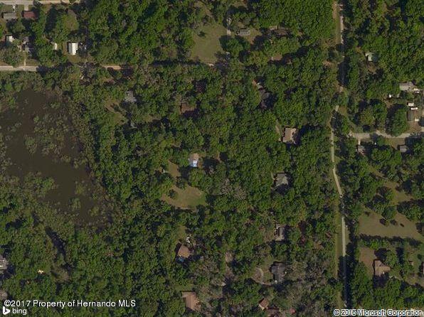 Acreage - Ridge Manor, FL (photo 1)