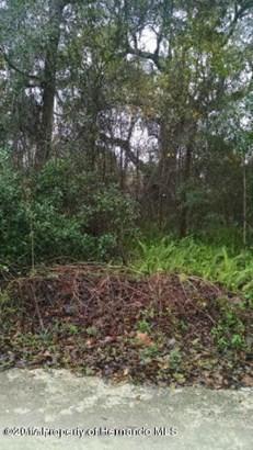 Acreage - Ridge Manor, FL (photo 2)
