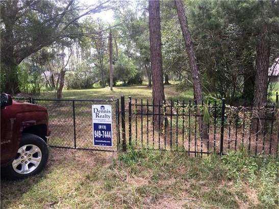 Single Family Use - LAND O LAKES, FL (photo 2)