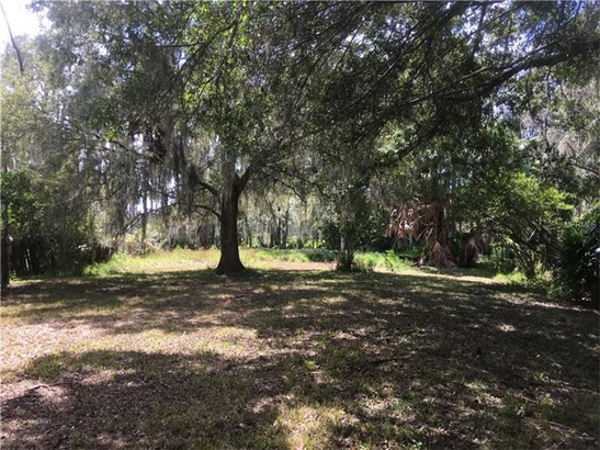 Single Family Use - LAND O LAKES, FL (photo 3)