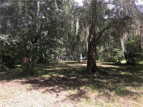 Single Family Use - LAND O LAKES, FL (photo 5)