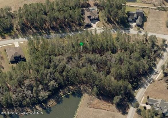 Single Family Residence - Brooksville, FL (photo 5)