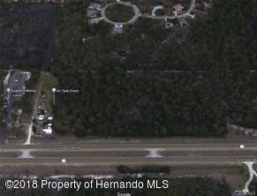 Acreage - Homosassa, FL (photo 2)