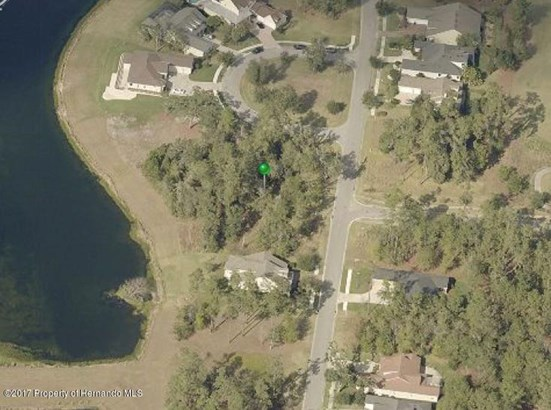 Single Family Residence - Brooksville, FL (photo 2)