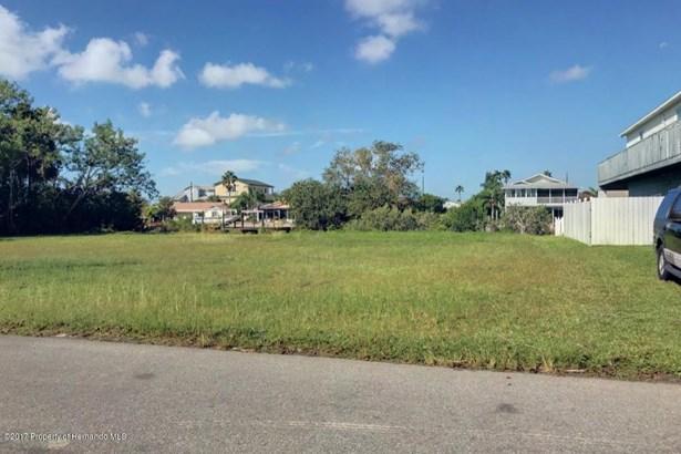 Single Family Residence - Hernando Beach, FL (photo 5)