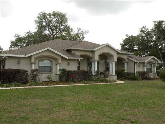 Single Family Residence, Contemporary - SUMTERVILLE, FL (photo 1)