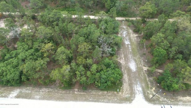 Acreage - Weeki Wachee, FL (photo 1)