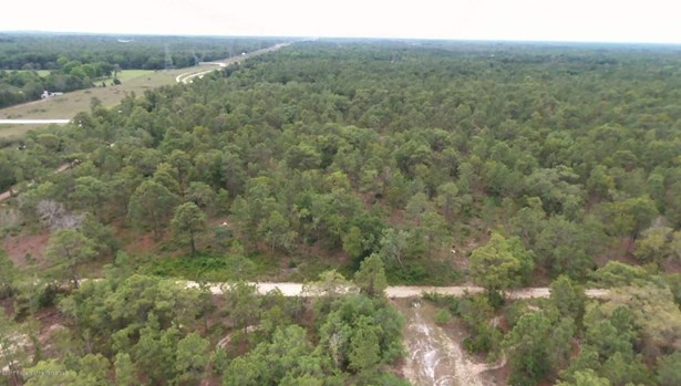 Acreage - Weeki Wachee, FL (photo 2)