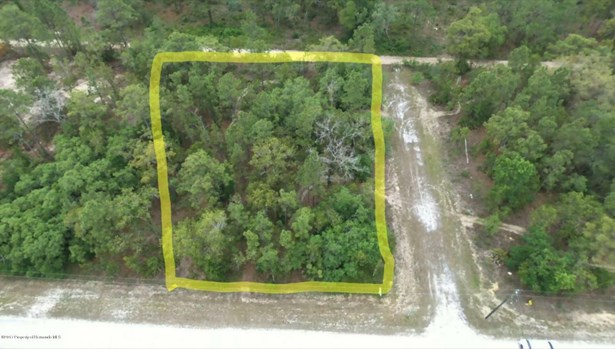 Acreage - Weeki Wachee, FL (photo 3)