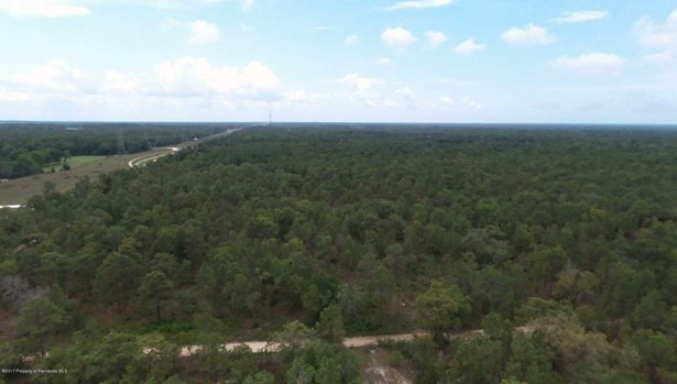 Acreage - Weeki Wachee, FL (photo 4)