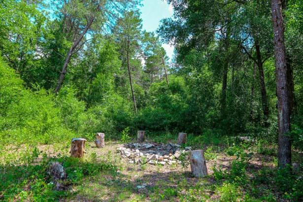 Ranch, Manufactured - Brooksville, FL (photo 4)