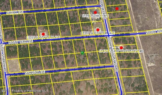 Single Family Residence - Weeki Wachee, FL