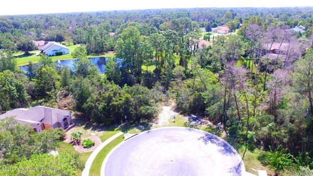 Single Family Residence - Weeki Wachee, FL (photo 2)