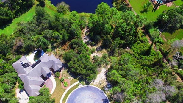 Single Family Residence - Weeki Wachee, FL (photo 4)
