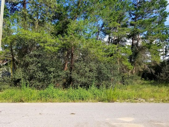 Single Family Residence - Spring Hill, FL (photo 1)
