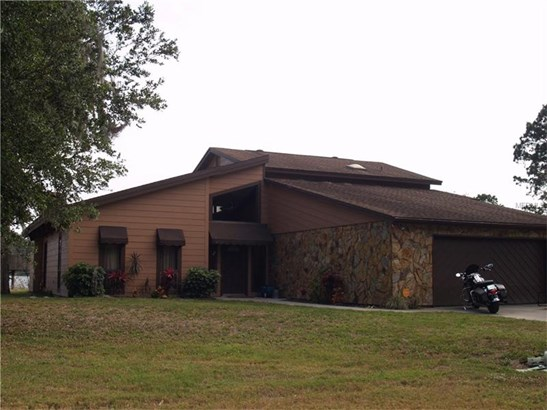 Single Family Home, Contemporary - LUTZ, FL (photo 1)