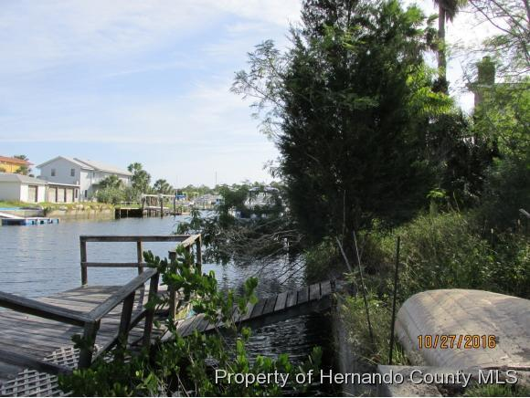 Single Family Residence - Hernando Beach, FL (photo 1)