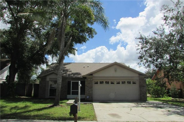 Single Family Residence - LUTZ, FL (photo 1)