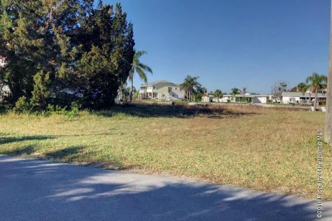 Single Family Residence - Hernando Beach, FL (photo 2)
