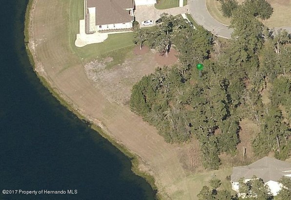 Single Family Residence - Brooksville, FL (photo 3)
