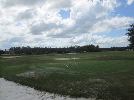 Single Family Home - SAN ANTONIO, FL (photo 5)