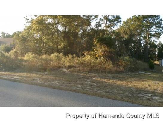 Single Family Residence - Spring Hill, FL (photo 3)