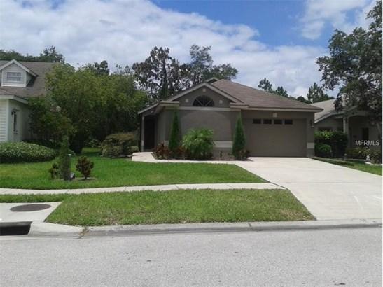 Single Family Home - LITHIA, FL (photo 1)