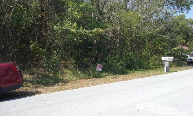 Acreage, Other - Spring Hill, FL (photo 1)
