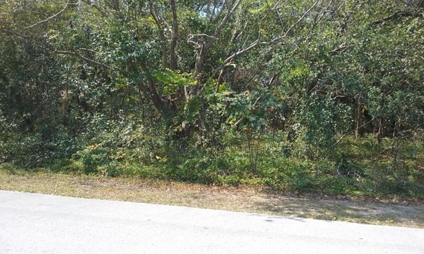Acreage, Other - Spring Hill, FL (photo 3)