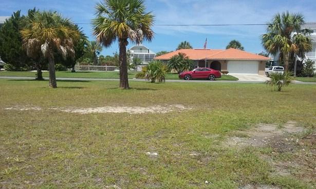 Acreage - Hernando Beach, FL (photo 4)