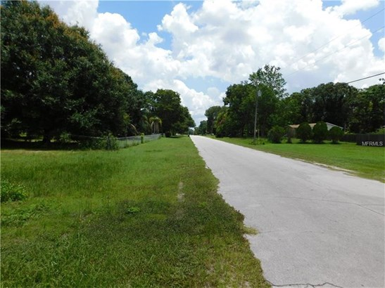 Mobile Home Use - WESLEY CHAPEL, FL (photo 3)