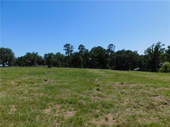 Unimproved Land - DADE CITY, FL (photo 4)