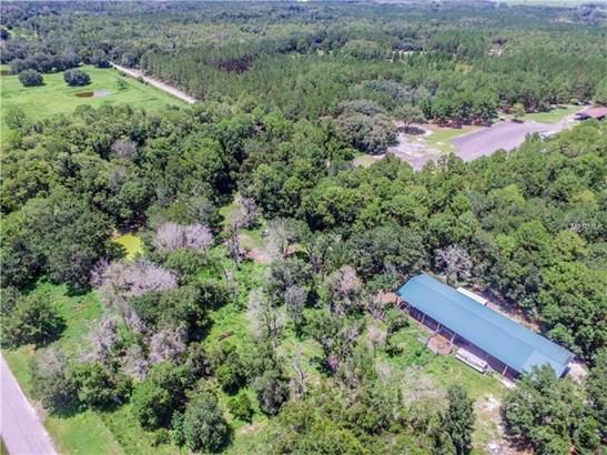 Ranchland - LAND O LAKES, FL (photo 5)