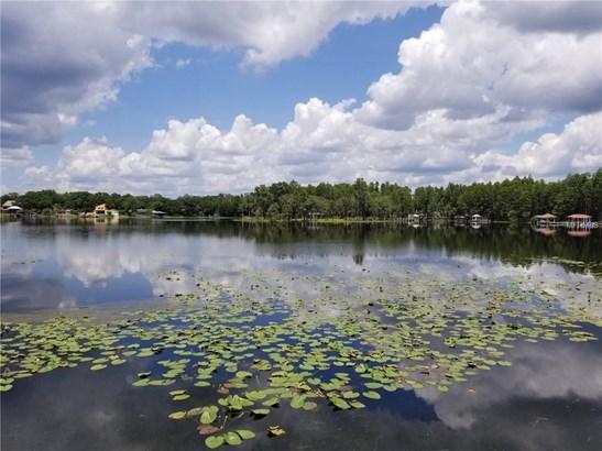 Unimproved Land - LAND O LAKES, FL (photo 1)