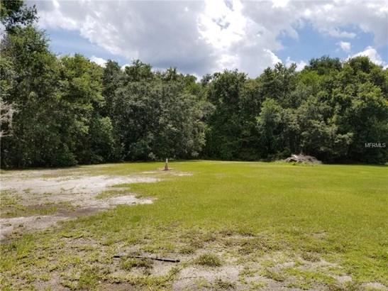 Unimproved Land - LAND O LAKES, FL (photo 3)